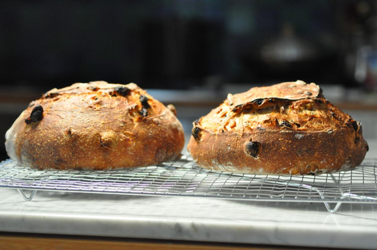 Two loaves of fruit bread (black raisins) Image: © Siu Ling Hui