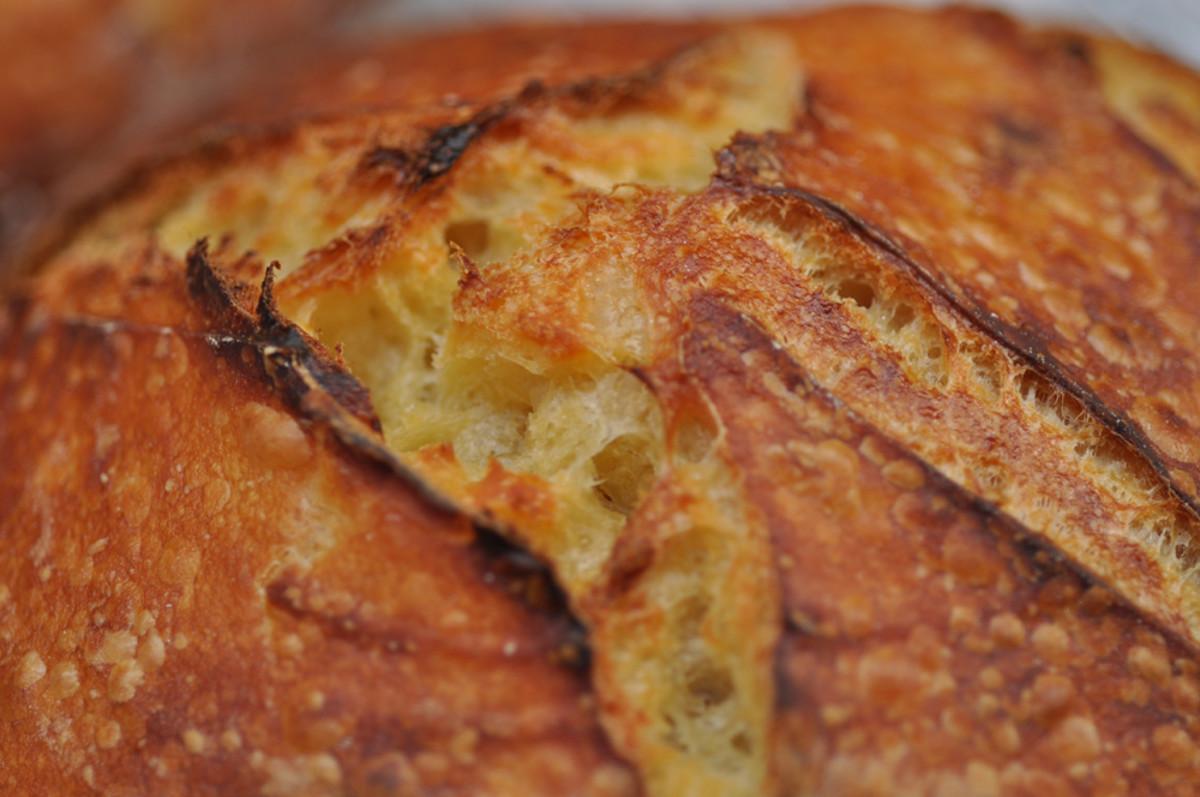 Close up of crust of salt fermented 100% semola at 70% hydration. Image: © Siu Ling Hui