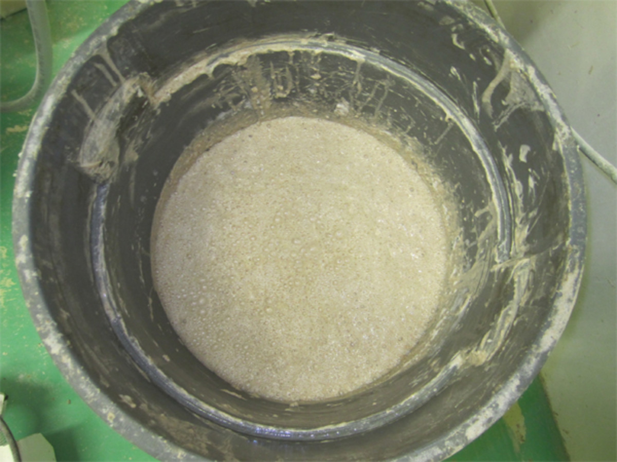 Leaven ready for mixing. Note all the bubbles on the surface. Image: © Andrew O'Hara
