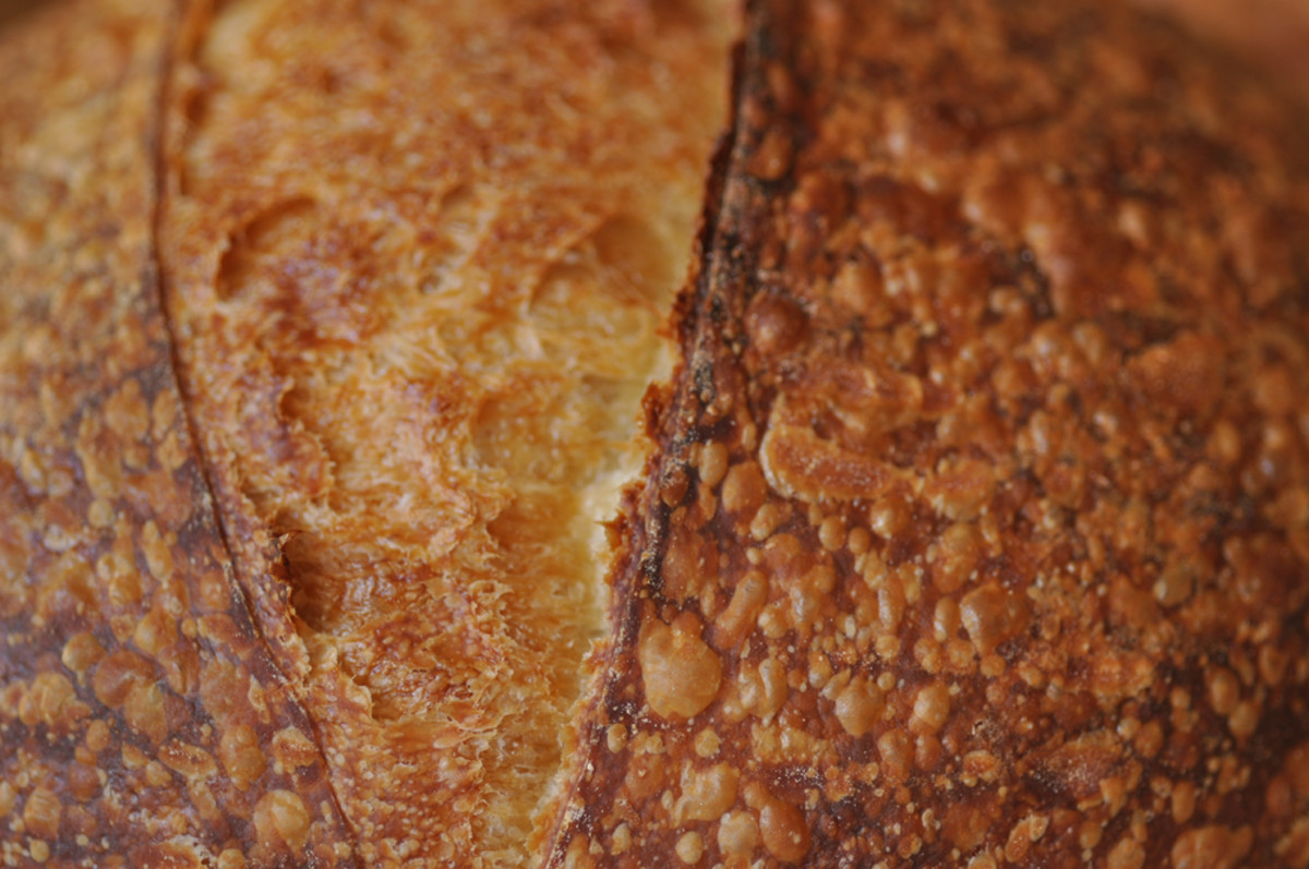 Crust of salt fermented sourdough with 100% baker's flour. Blistering is intense. Image: © Siu Ling Hui