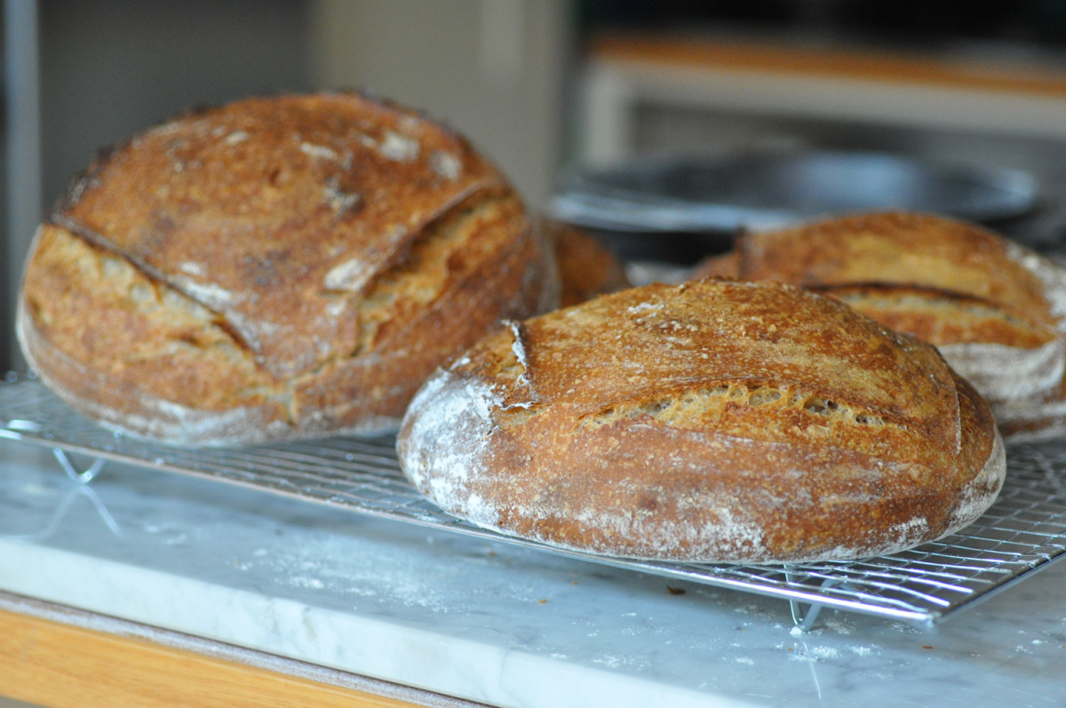 My first trial of wholemeal and plain flour sourdough bread. Image: © Siu Ling Hui