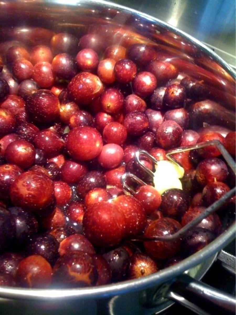 Preparing and Cooking Muscadine Grape Hulls