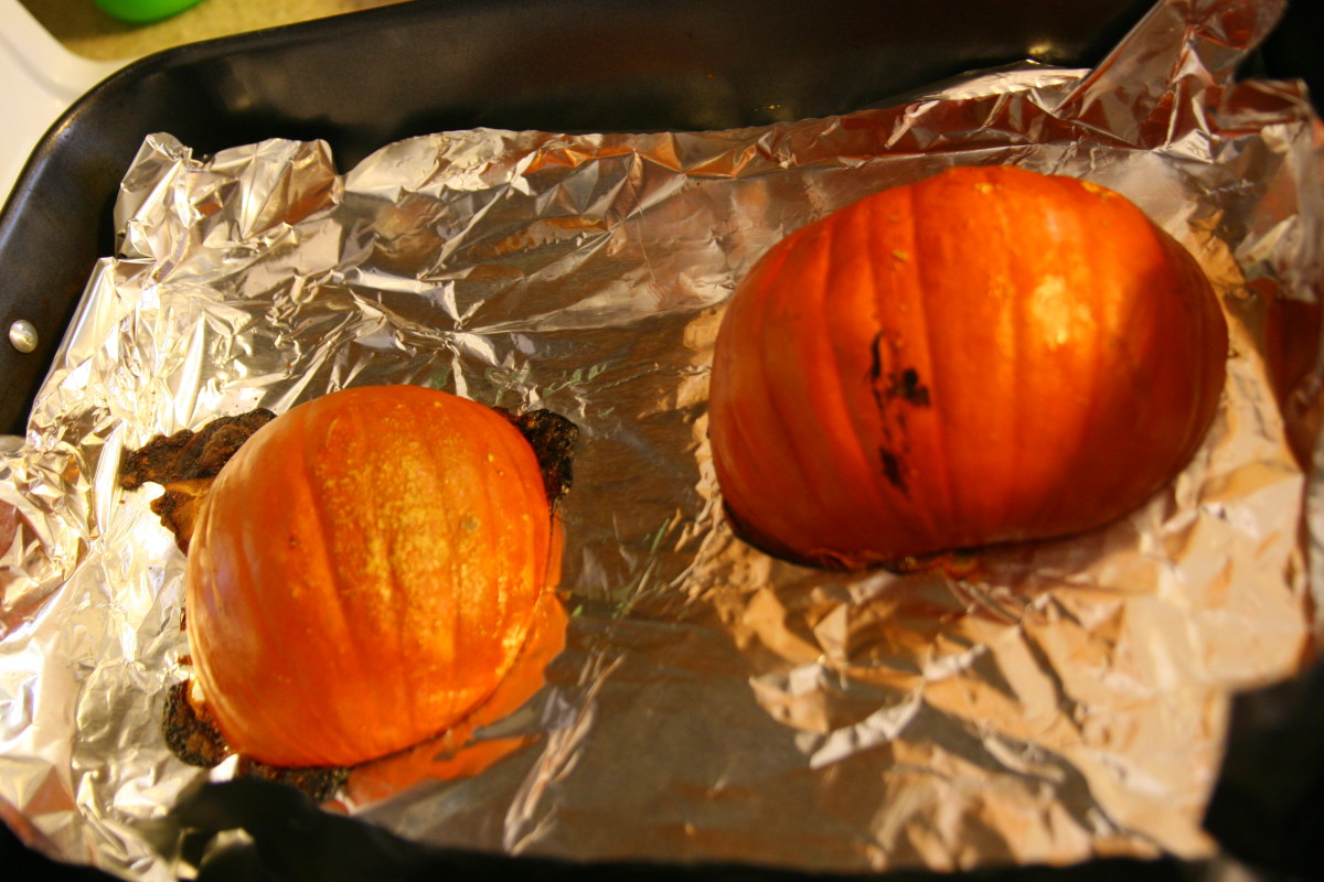 The pumpkins will become soft and can be pierced with a butter knife when they are done cooking.