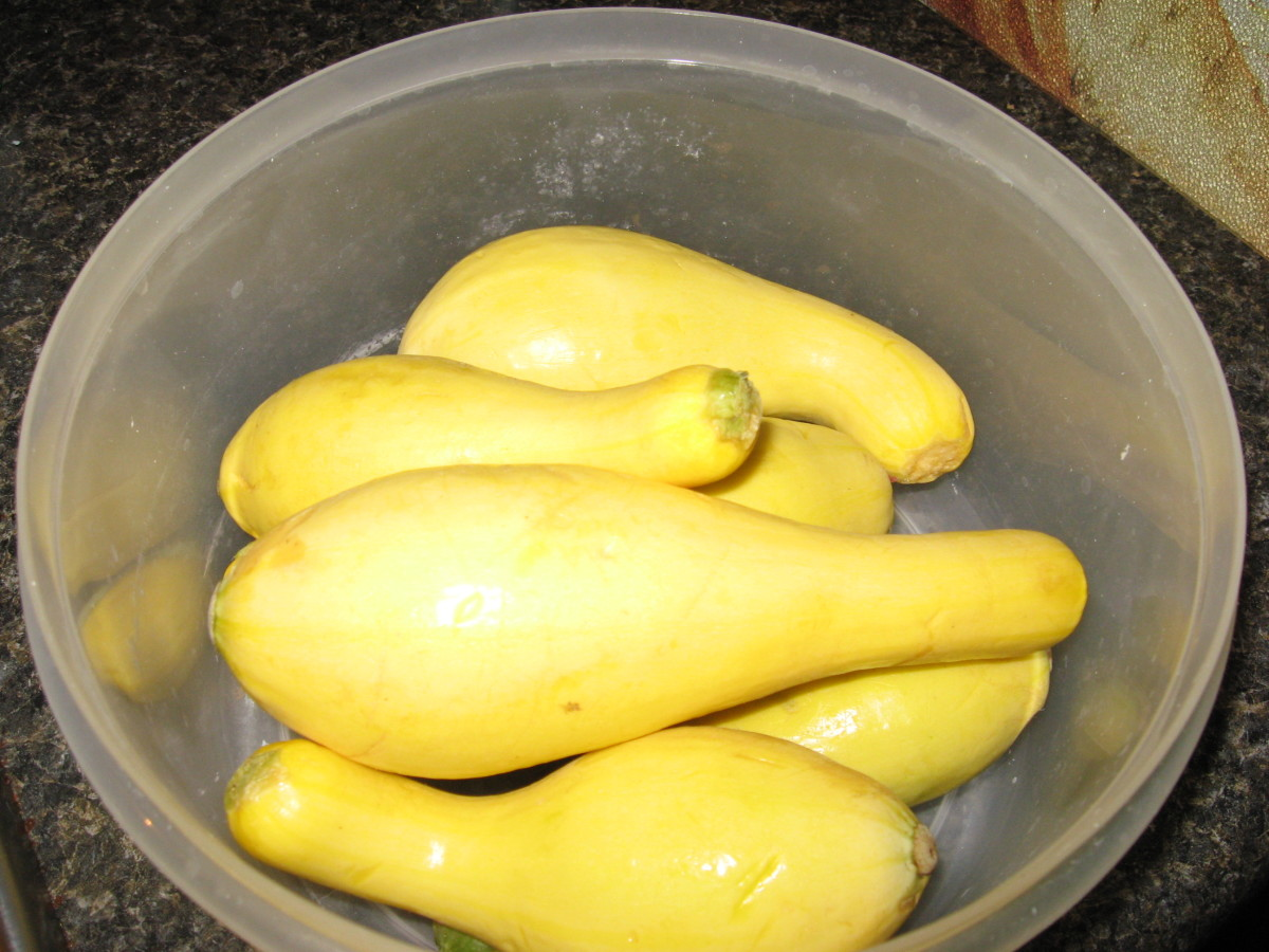 The best squash recipes start with tender fruits.