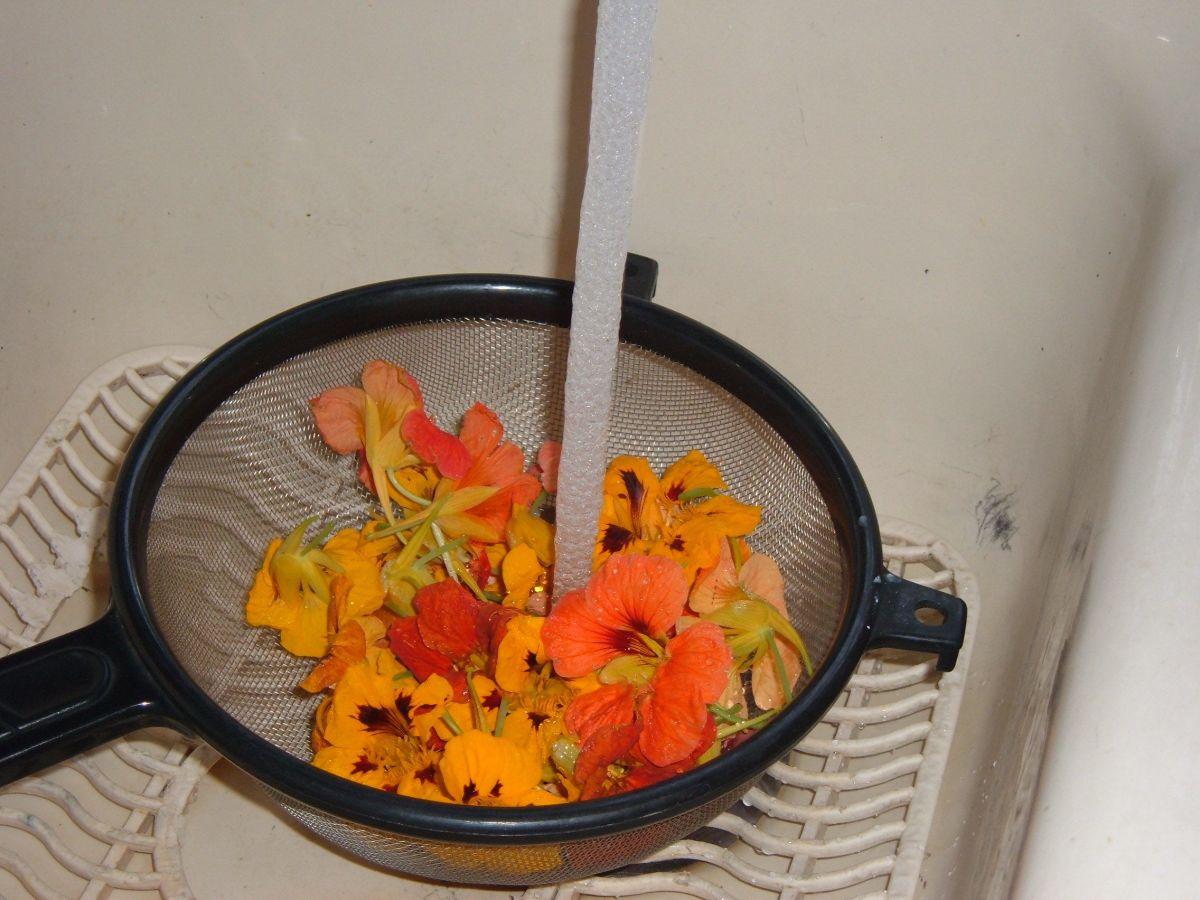 Rinse the Nasturtium flowers thoroughly.