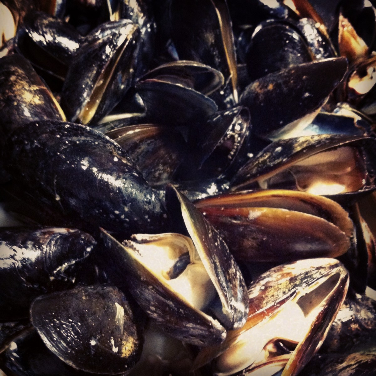 Steamed mussels are a healthy choice.