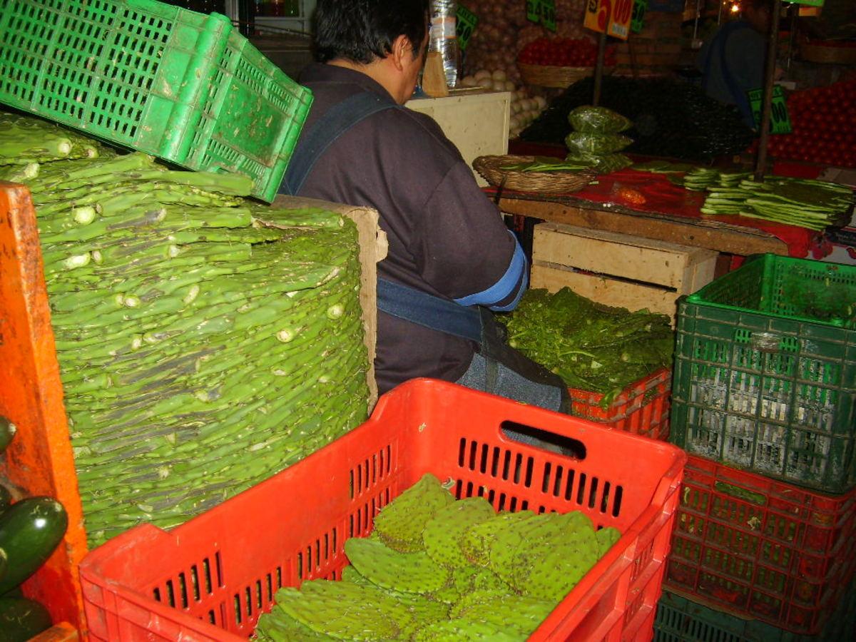 Processing nopal cactus pads