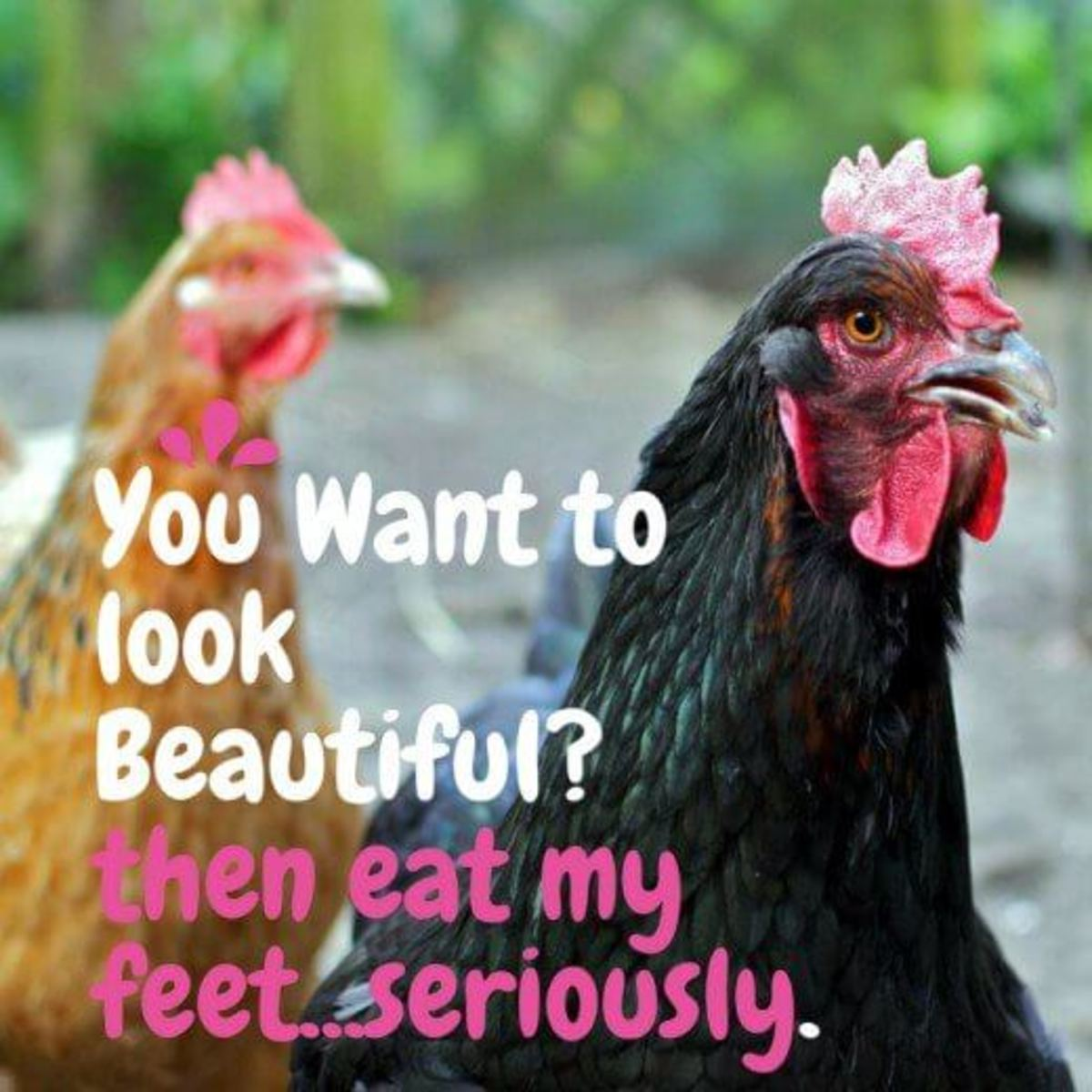 is-there-any-benefits-in-eating-chicken-feet