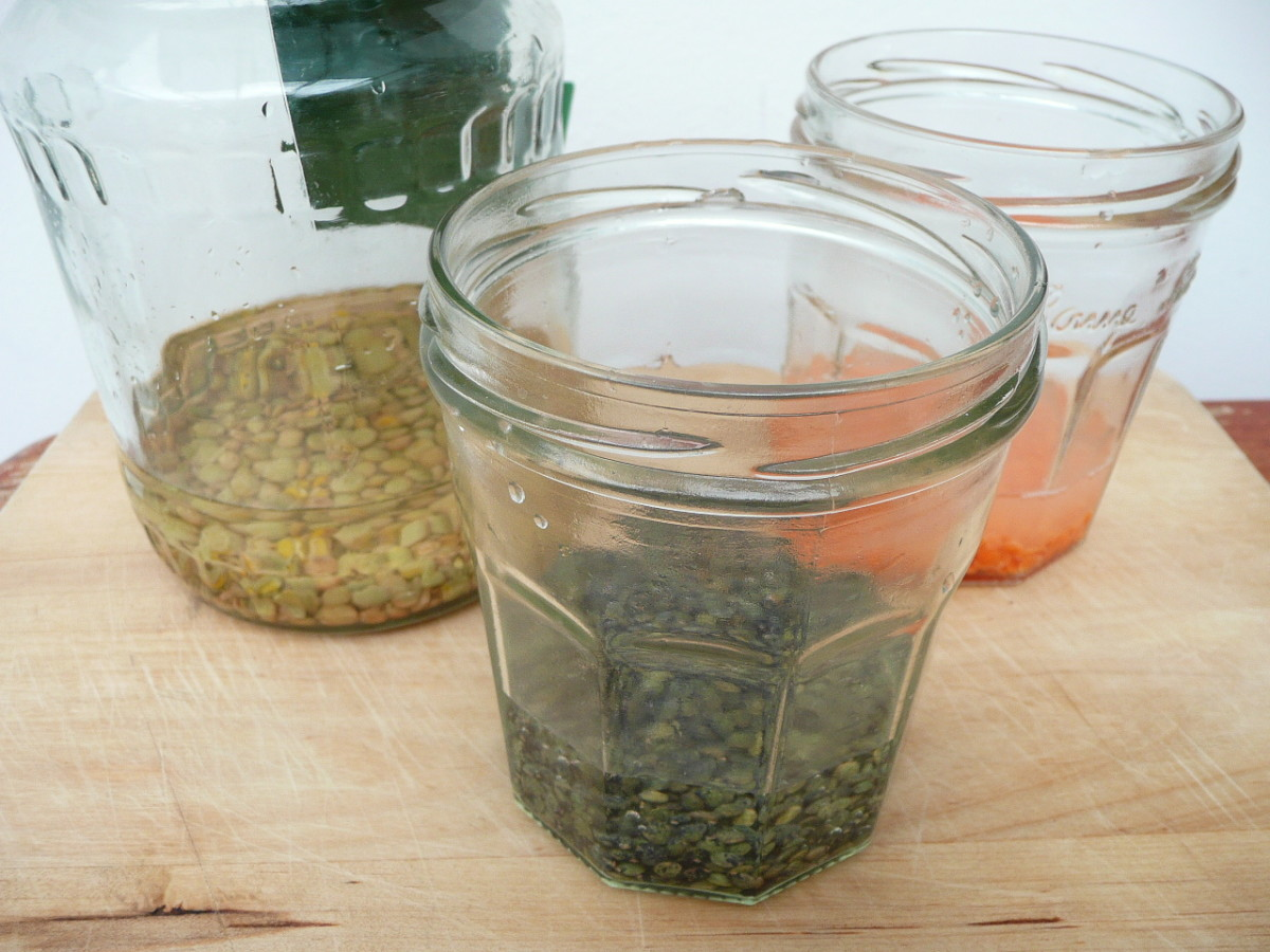 Soak your chosen lentils in water.