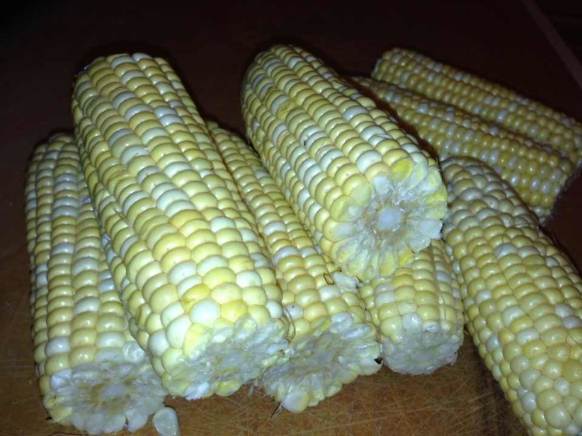 Freshly shucked corn on the cob