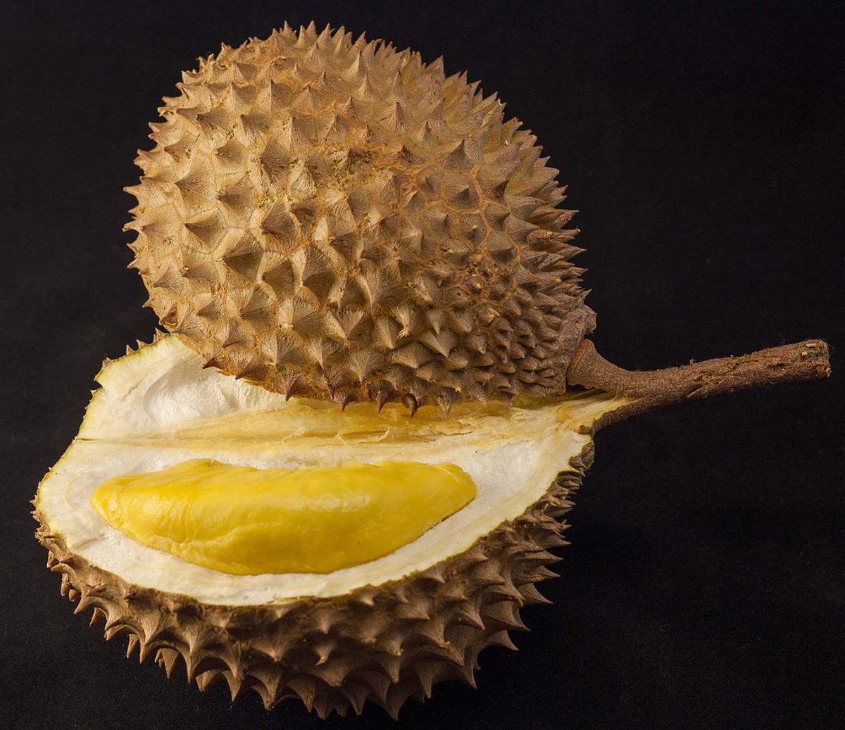 Durian, the king of all fruits