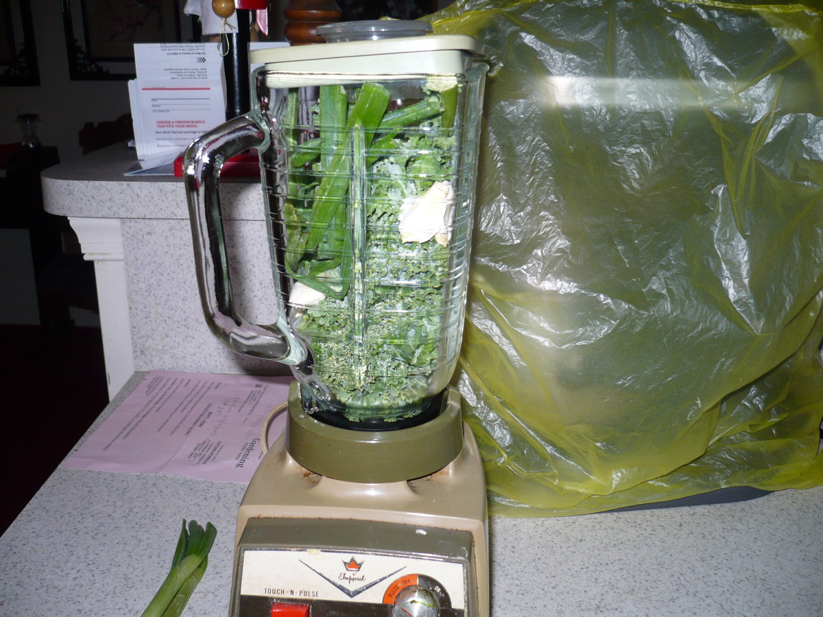 Put all ingredients into blender or it is easier in a food processer