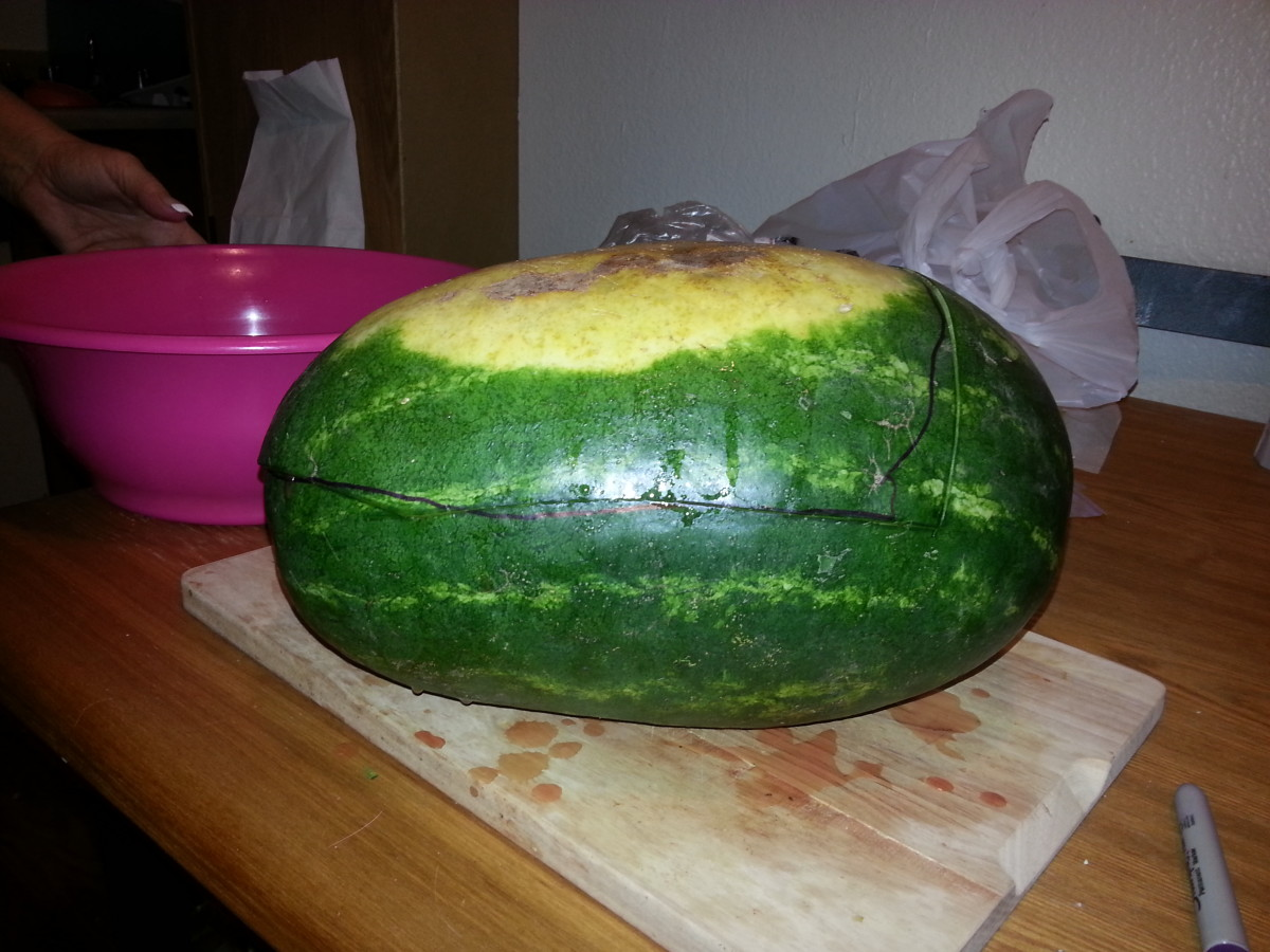 A clean melon with the lines drawn on it.
