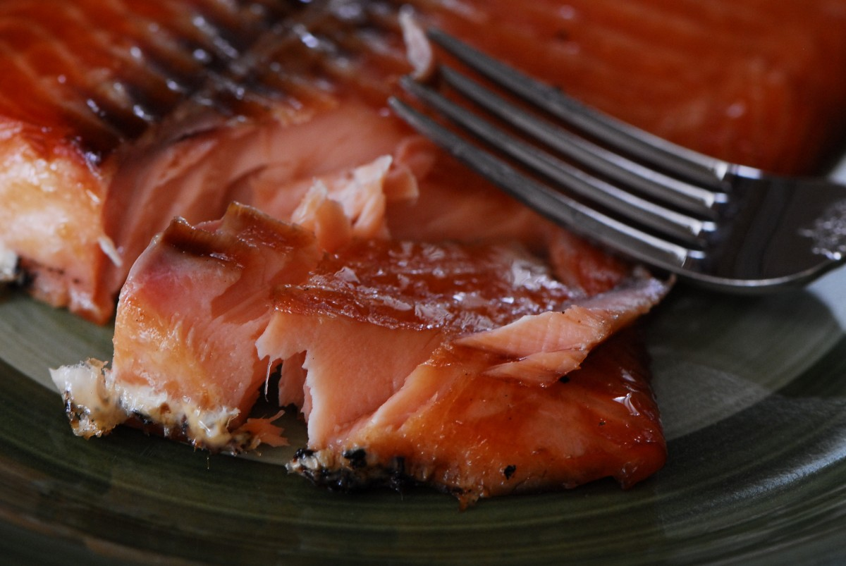 Smoked Salmon straight of of the Big Green Egg.  It is unbelievably delicious and easy!  Just look at that glazing!