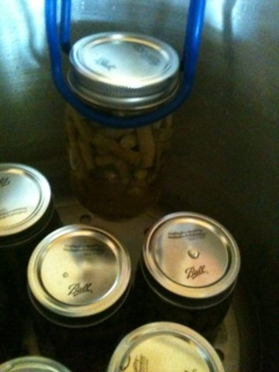 Lifting the jars out of the canner.