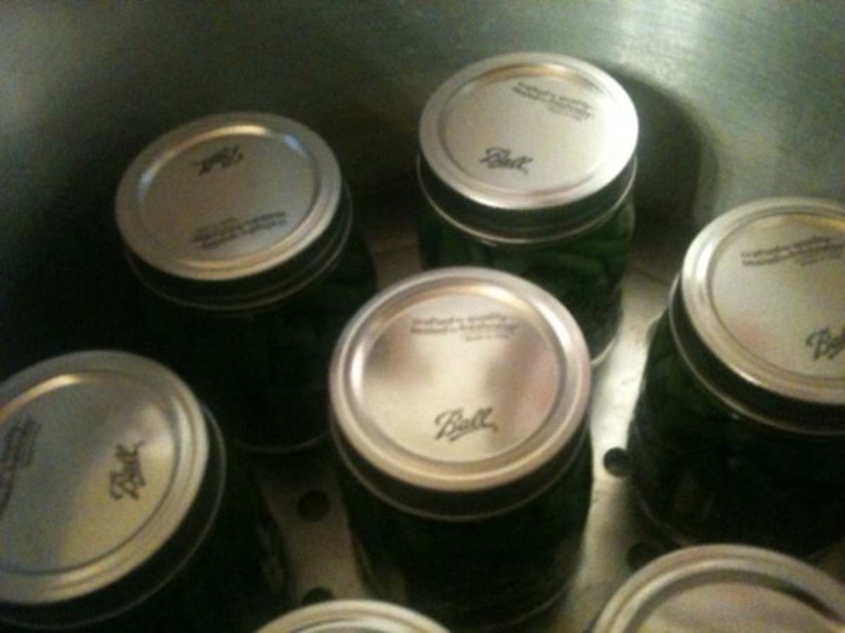 Jars are in the canner and ready for the processing to begin.