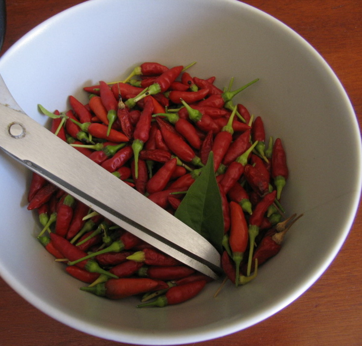 Hot chilies