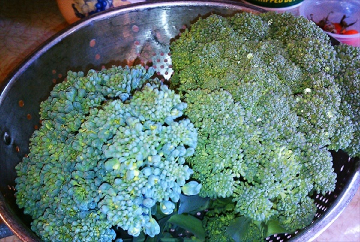 Use two heads of fresh broccoli.  This works well for floppy broccoli, or broccoli that was on the stock just a tad too long - like the head on the left that's about to flower.