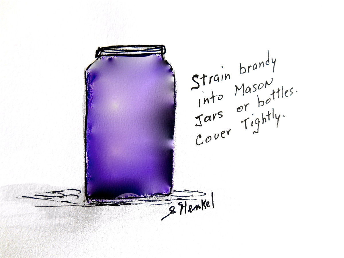 After fermentation is complete, strain brandy through cheesecloth into bottles or Mason Jars.