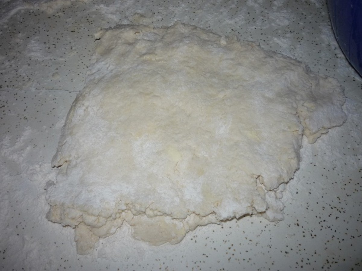Start to pat the dough down with your fingers and fold it over onto itself 4 or 5 times.