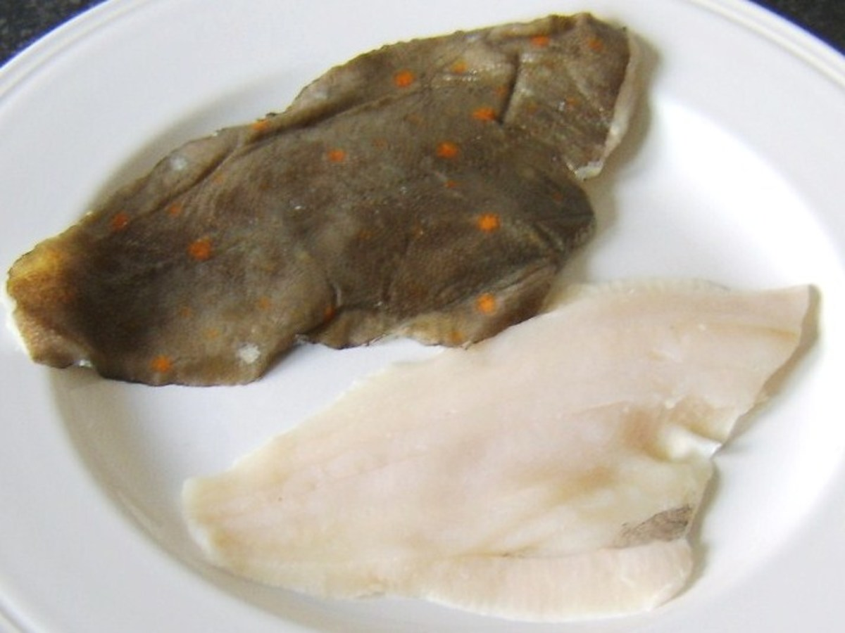 A top plaice fillet with brown skin and orange spots and a bottom plaice fillet with white skin