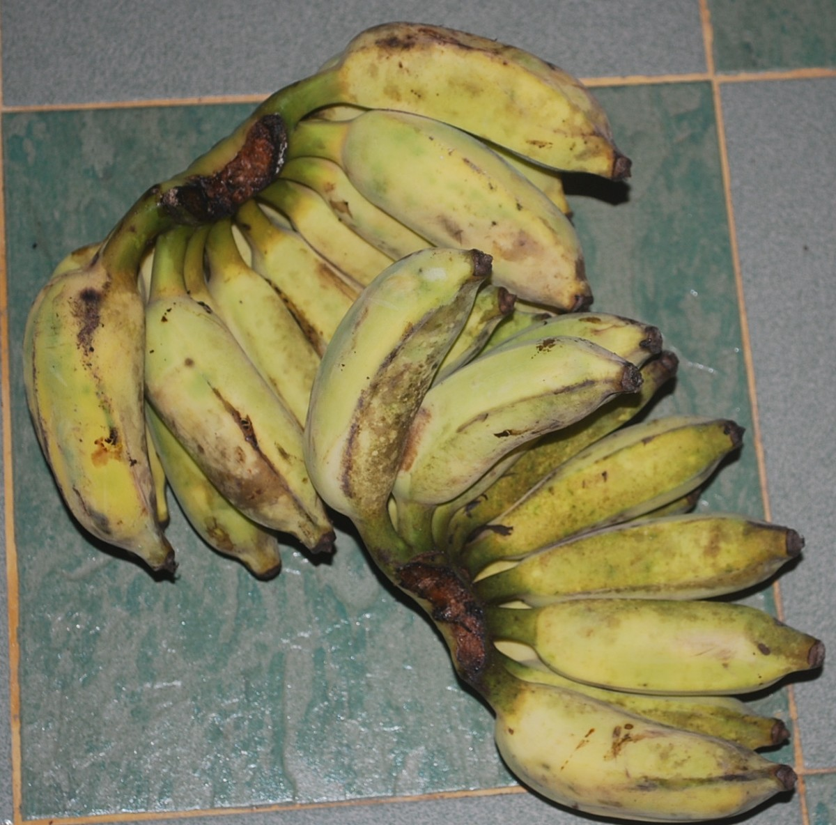 Pisang Awak, a not so popular banana variety as it has seeds that can be a nuisance when you eat them as banana fritters