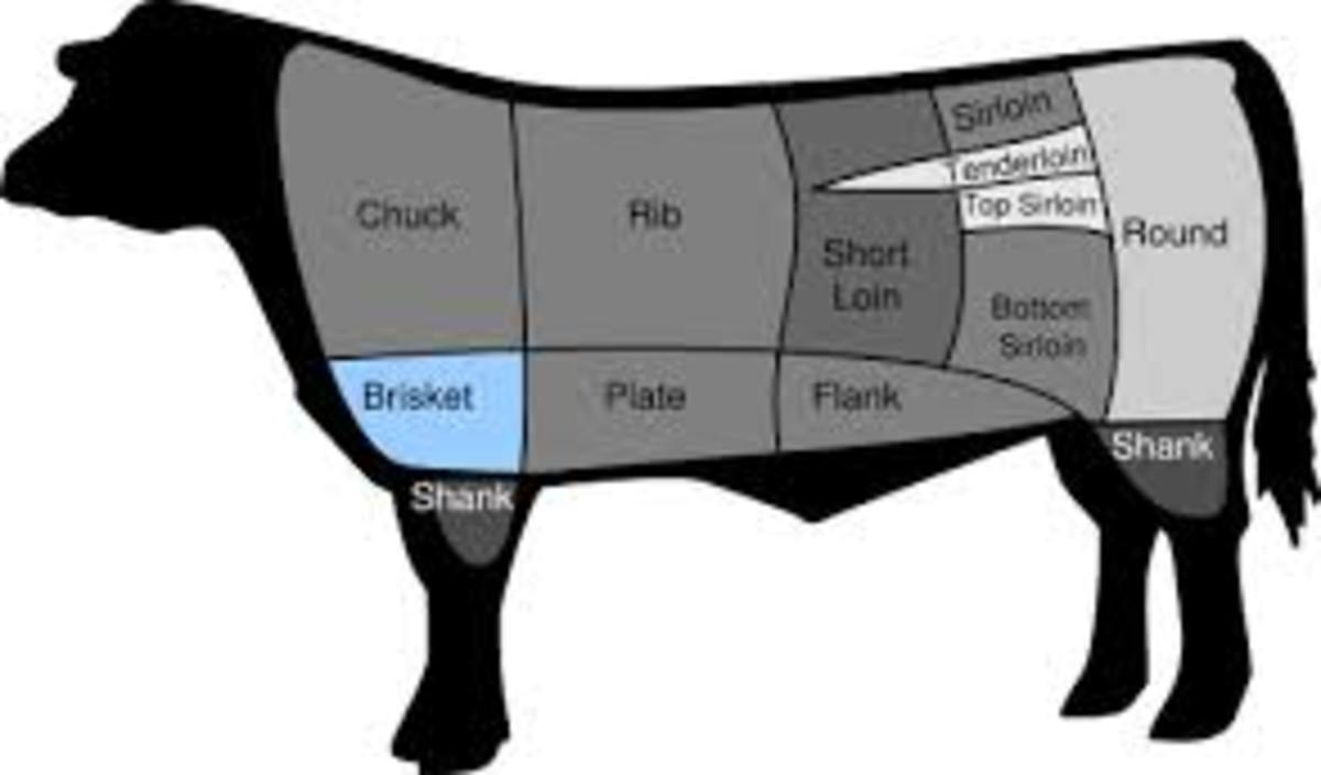 This is the location of where brisket is located on the beef.