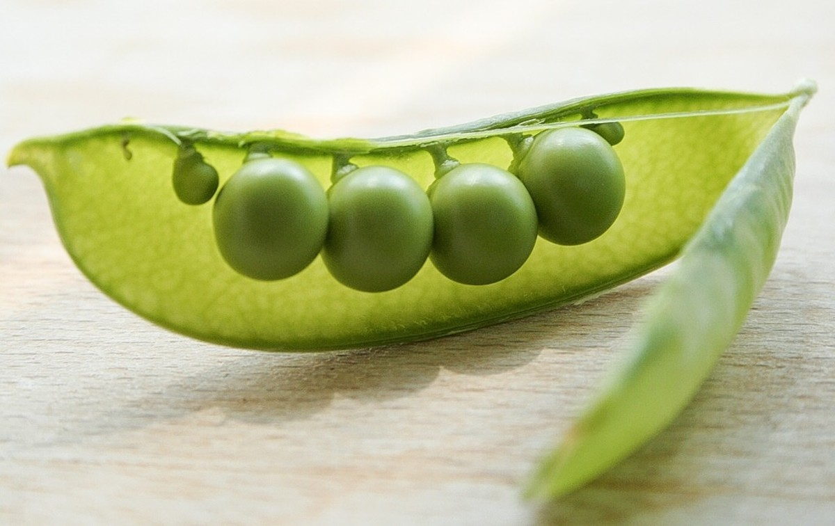 An artistic view of green peas in a pod