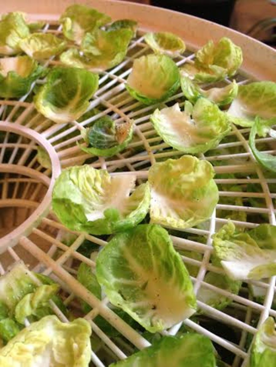 Seasoned brussels sprout chips on the dehydrator tray.
