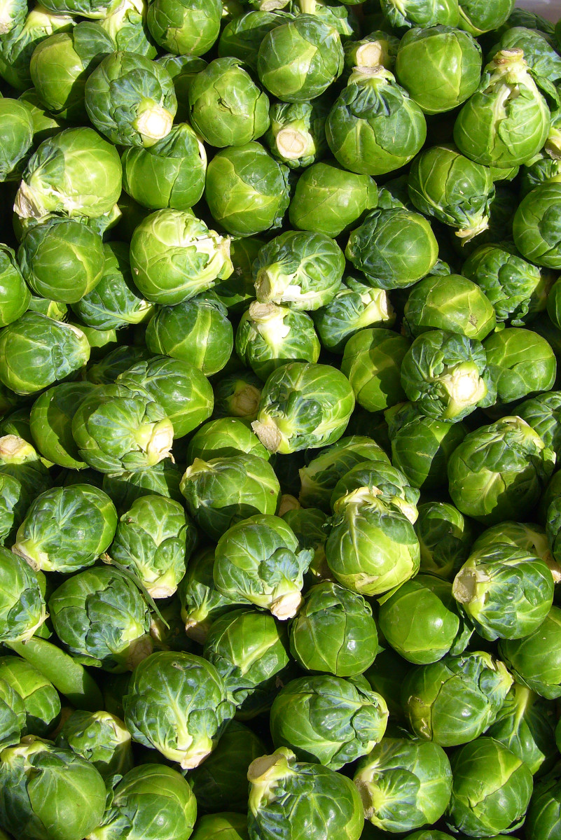 Brussels Sprouts!  YUM!