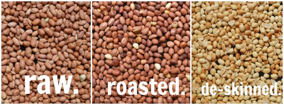 The process of roasting peanuts before blending them up.
