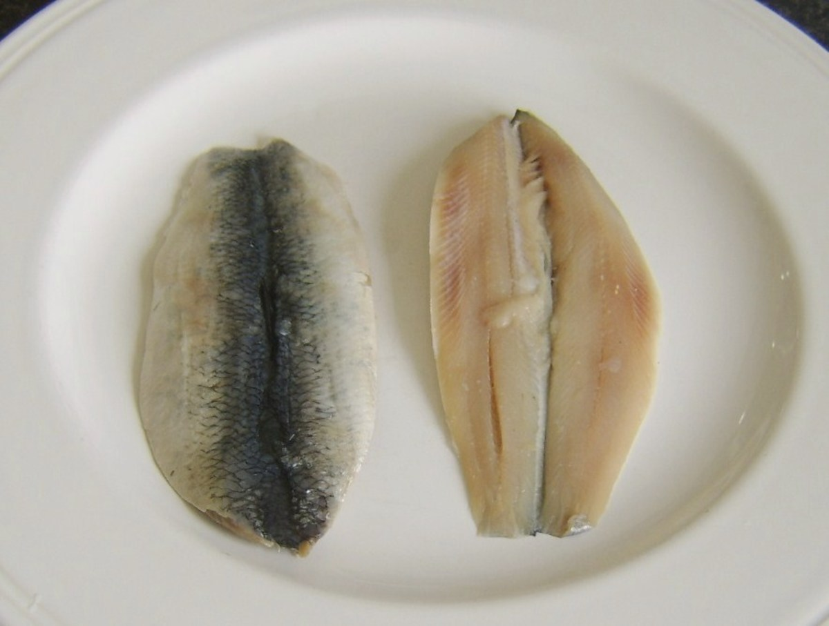 Fresh herring fillets