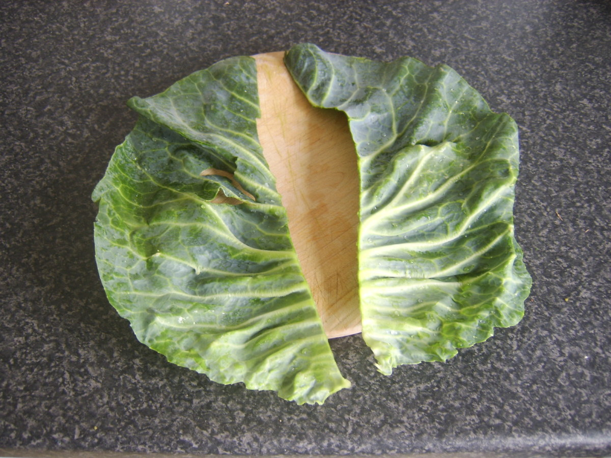 Cabbage leaf is cut fully in half