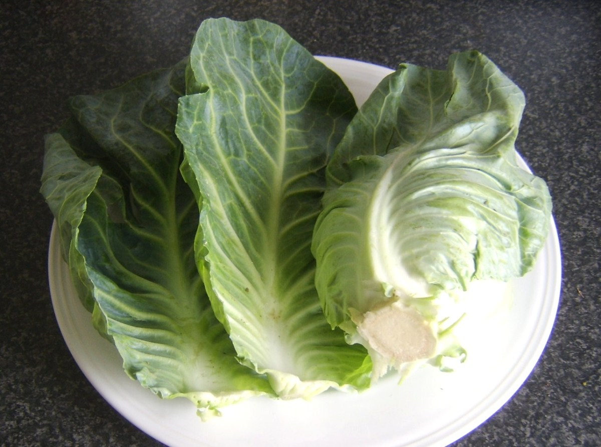 Outer leaves removed from cabbage
