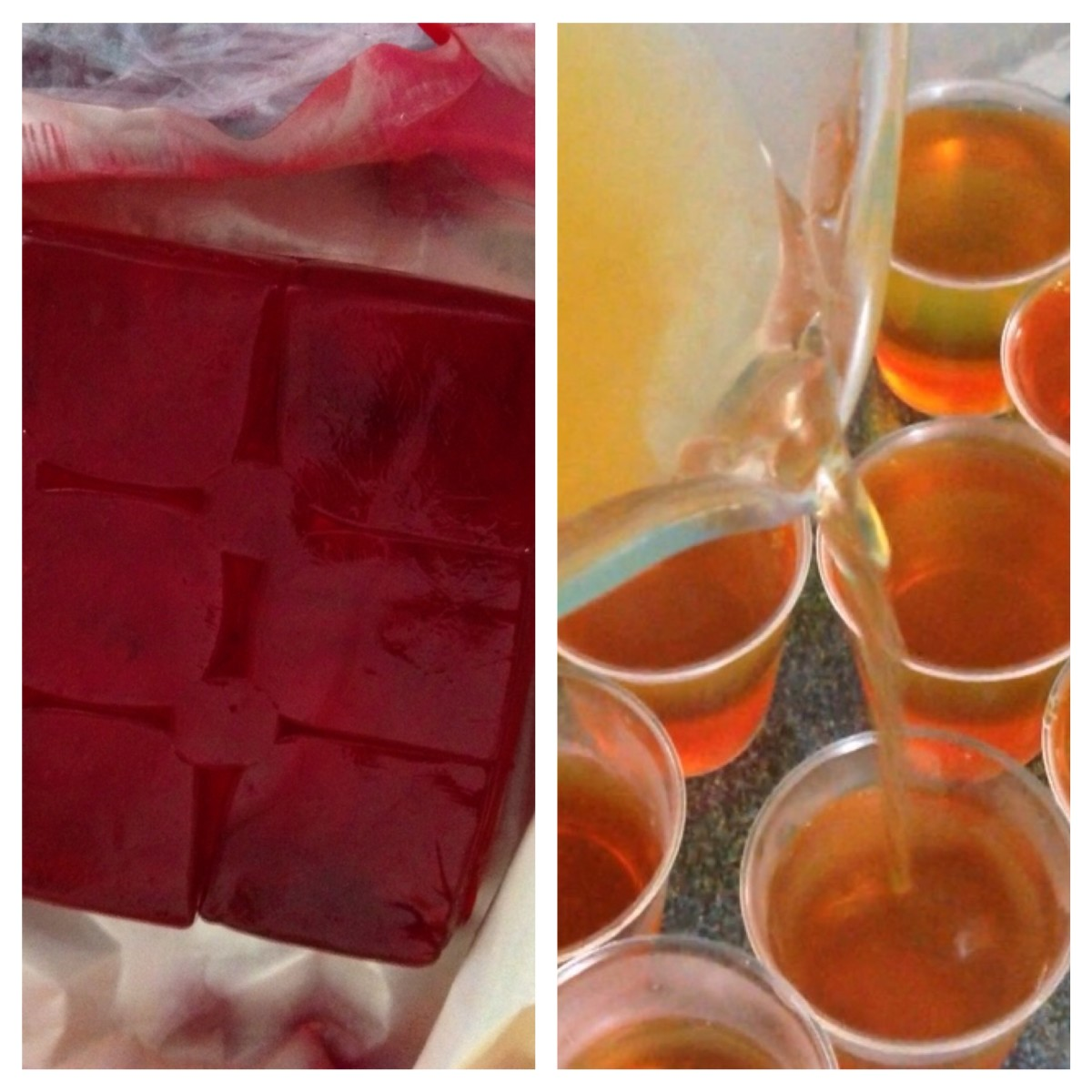 Strawberry Jelly and Shots in Progess