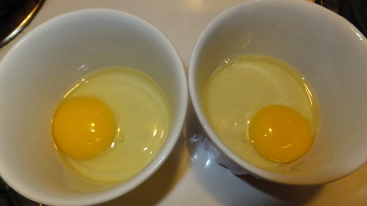 The golden color of the fresh egg on the left is ever so slightly brighter than the supermarket egg the right.  Nearly identical.