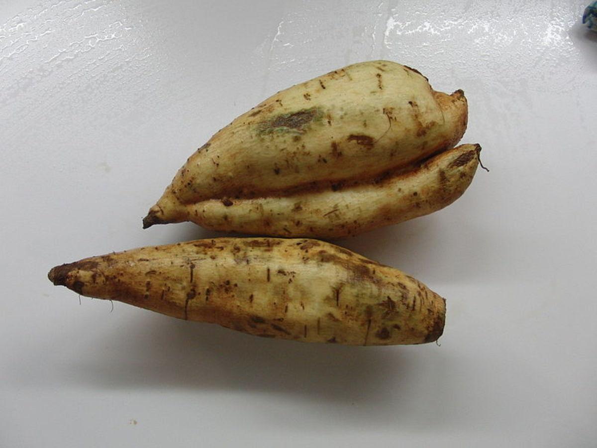White sweet potatoes
