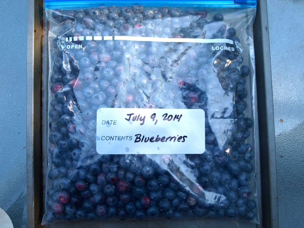 Once the berries are frozen, transfer them to a freezer bag and label.  Place in the freezer until ready to use.