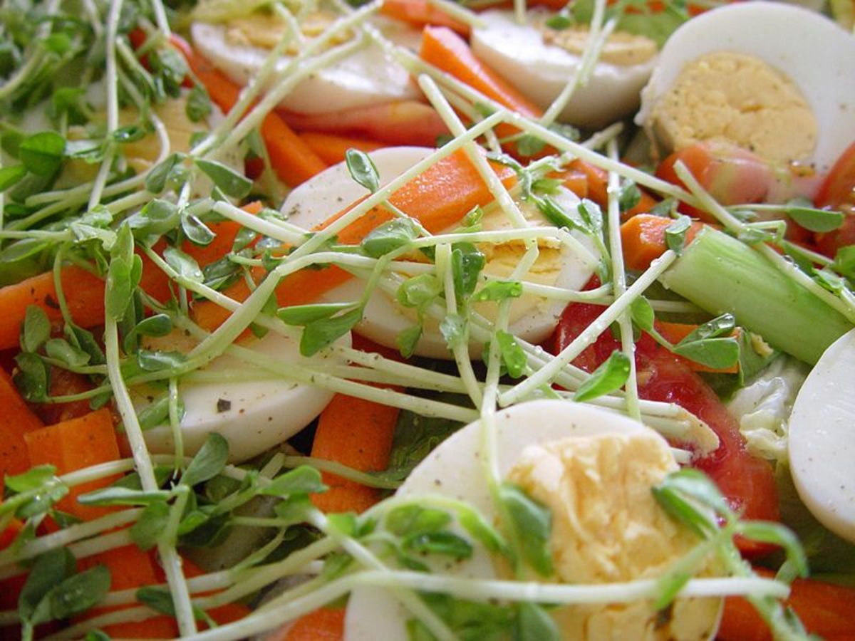 Egg, cress, carrot and tomato salad - part of gluten free lunch