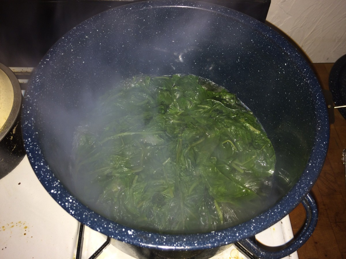However you choose to prepare pokeweed, the boil/rinse process is essential.