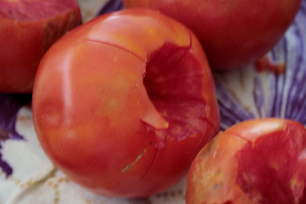 never-buy-canned-tomatoes-again