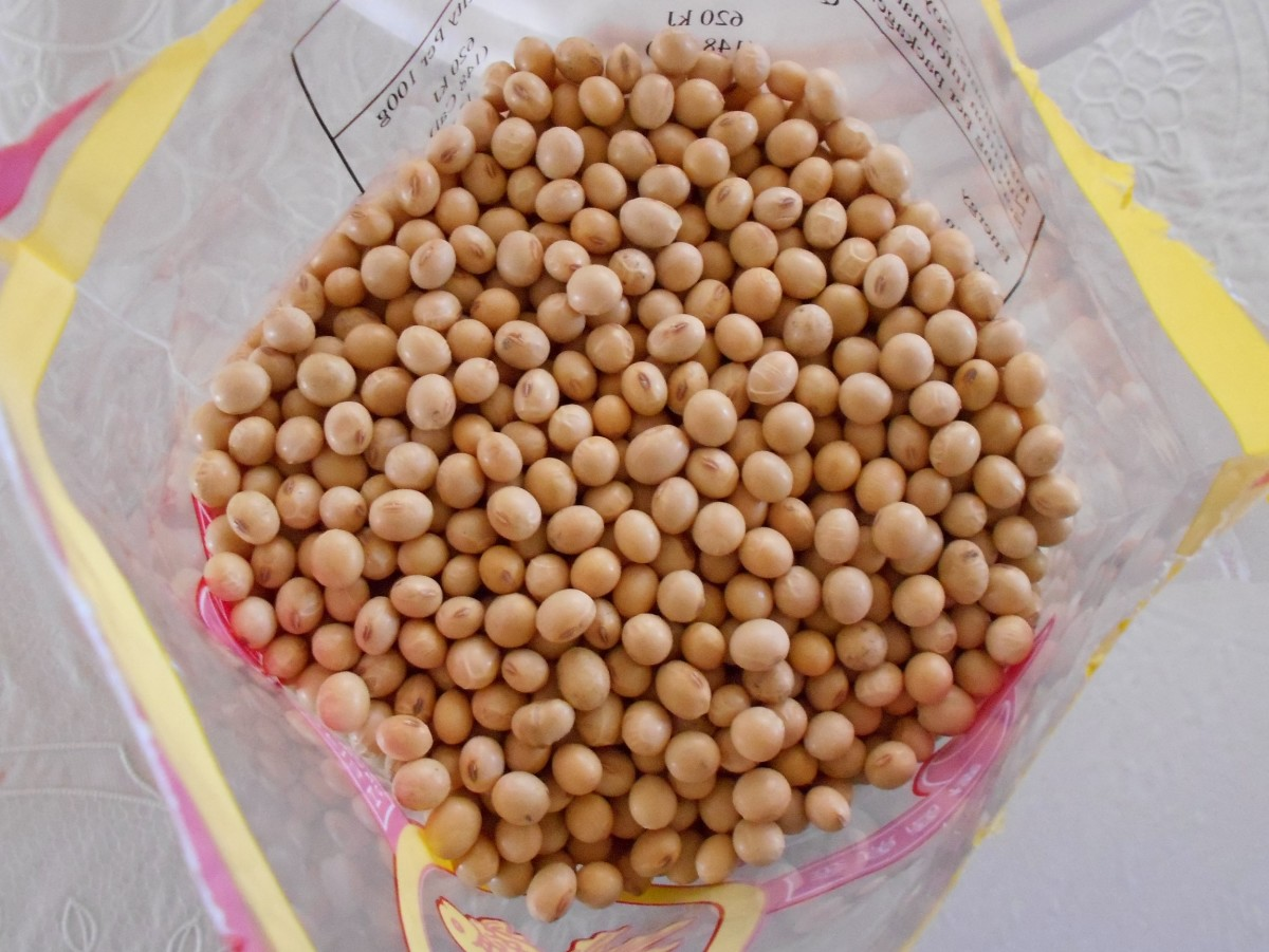 Soybeans - the main ingredient of traditional tempeh.