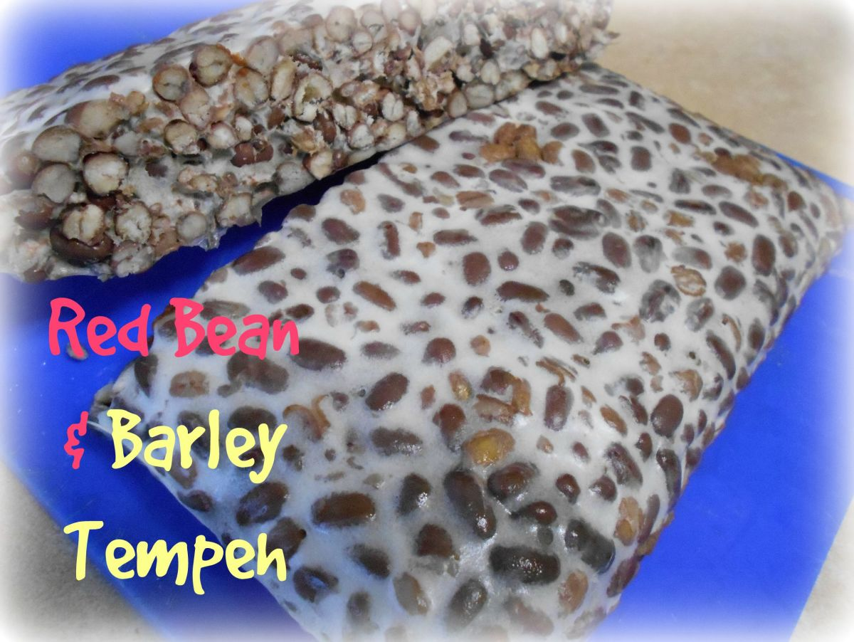 Red bean and barley tempeh has great flavor and is one of my favorites!