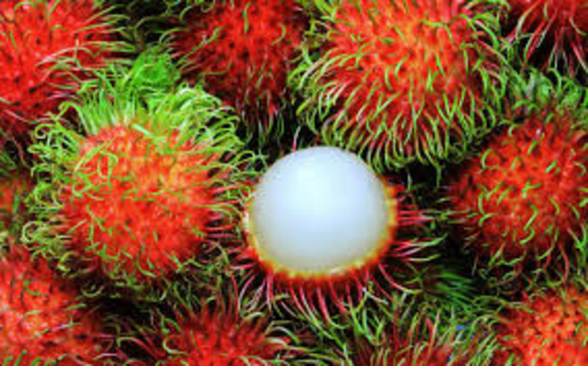 delicious-chinese-fruit-which-westerners-particularly-enjoy