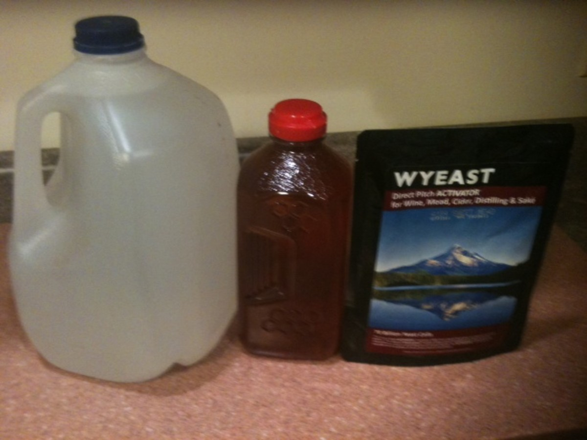 The basic ingredients -- water, honey, and yeast.