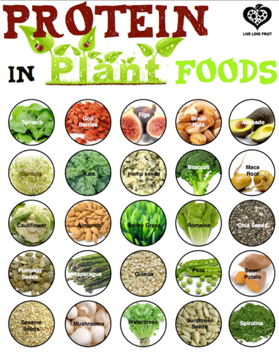 This chart lists a bunch of plant foods that can be good protein sources.
