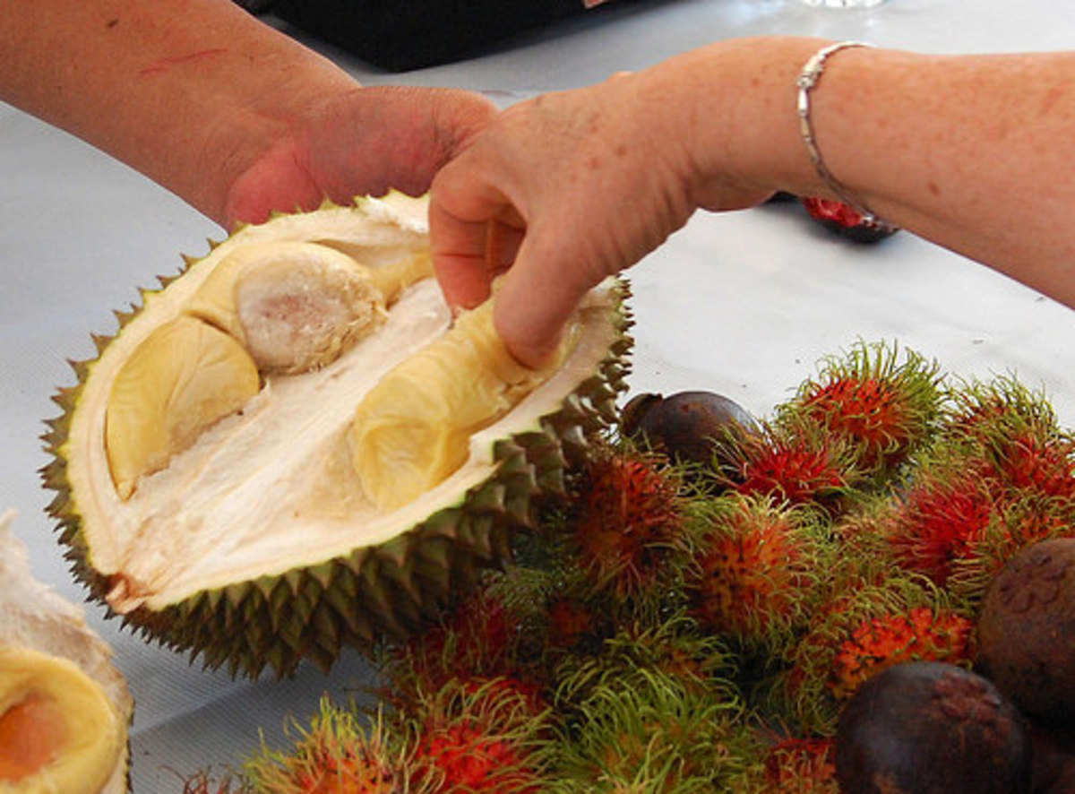 Durian fruit is notoriously niffy.