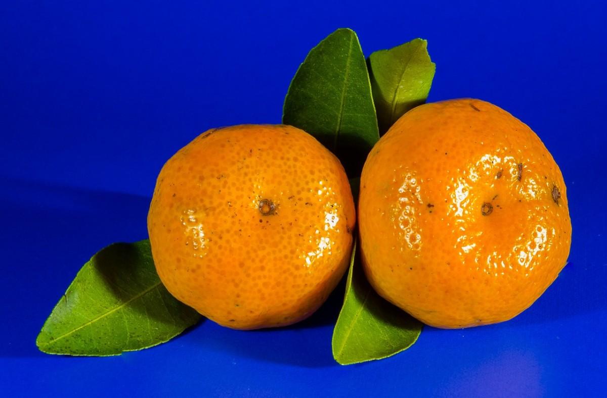 Mandarins, a symbol of prosperity.