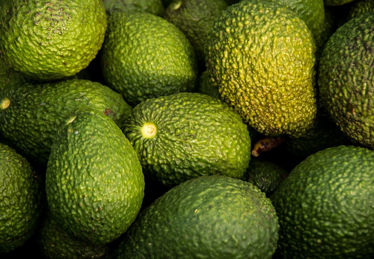 All About...Fruits and Vegetables--Avocado. It's Not Just for Guacamole