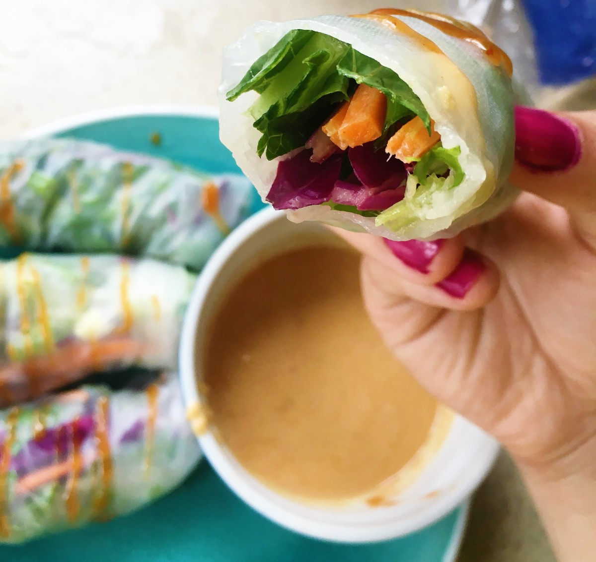 spring-rolls-with-thai-peanut-sauce